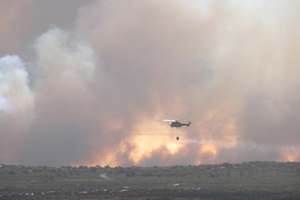 Buschbrand kurz vor dem Kap der Guten Hoffnung