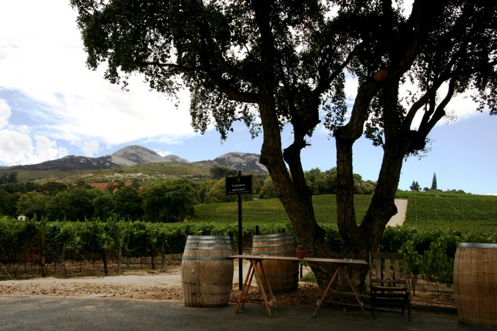 3 Winery Laborie
